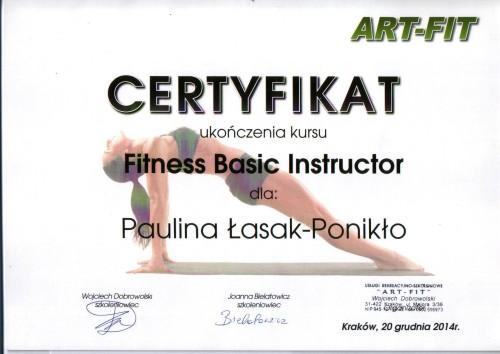 Instruktor Fitness